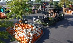 Bengtson's Pumpkin Farm - Your family's annual fall tradition - Homer Glen outside of Chicago