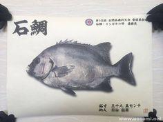 デジタル魚拓サービス 魚墨で作成した石鯛のリアル魚拓です。  It is a realistic fish print  of a striped beakfish.  www.uosumi.net/