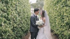 Bride and groom in tall hedge rows san diego wedding.