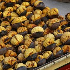 Plan to Roast Chestnuts for the holiday season. �Its very easy to do.. Roasted Chestnuts Recipe from Grandmothers Kitchen. Follow us on Pinterest.