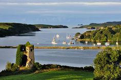 Ireland, Cork, Castletownshend, View Of Castlehaven Harbor - eStock Cork Ireland, Ireland Travel, Irish Landscape, Ireland Landscape, Irish Eyes Are Smiling, West Cork, Irish Roots, County Cork, Emerald Isle