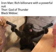 Funny Marvel Memes, Dc Memes, Avengers Memes, Marvel Jokes, Marvel Dc Comics, Meme Comics, True Memes, Animal Jokes, Funny Animal Memes