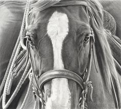 InSight Gallery Artist: Mary Ross Buchholz - Title: He's Ready  Charcoal-SR