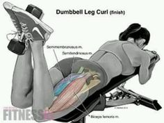 The Benefits and Considerations of In Home Personal Training - The Best Bodybuilding Workouts Program Hamstring Workout, Butt Workout, Gym Workouts, At Home Workouts, Workout Tips, Sport Fitness, Fitness Diet, Health Fitness, Woman Workout