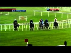 Here you can watch live horse racing stream for free