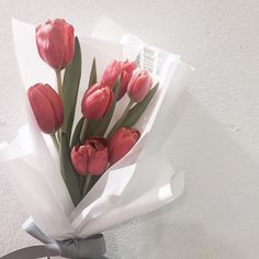 Tulips or summmm. Tulips In Vase, Pink Tulips, Flower Aesthetic, Pink Aesthetic, Tulips Garden, Planting Flowers, Cactus Flower, My Flower, Blooming Flowers