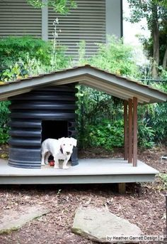 This is just the best dog kennel ever!