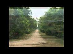 jaya radhe jaya krsna Krishna Songs, Country Roads, World, Youtube, The World, Youtubers, Youtube Movies