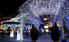 冬の夜を光で彩る「おおいた光のファンタジー」。イルミネーションで大分市中心市街地を幻想的に演出=27日午後、大分市のJR大分駅府内中央口広場