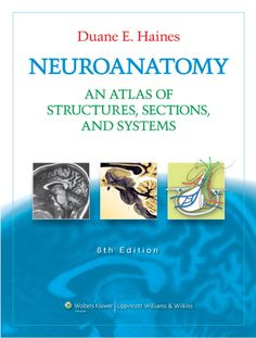 Neuroanatomy   an atlas of structures, sections, and systems, 8th ed