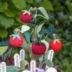 DIY Felt Tomato Plant Tutorial - Lia Griffith