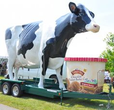Because giant cows make people smile. www.turkeyhill.com