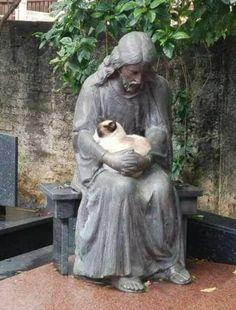 Kitty loves Jesus