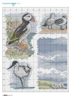 Wasservögel 1