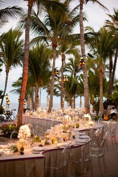 serpentine long table curving through the palm trees on the beach. what a dream.