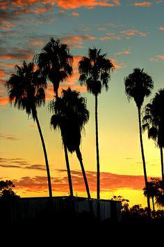San Diego Sunset - Balboa Park by Michael in San Diego, California, via Flickr