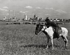 Dallas, Texas - Cowboy- Skyline 1925 -(Antique-Old)- Reproduction Photo Dallas Skyline, Reproduction Photo, Texas Cowboys, Skyline Art, Texas History, Horse Photos, Dallas Texas, Dallas County, West Texas