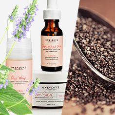 Find+out+the+health+and+beauty+benefits+of+chia+oil,+extracted+from+the+seeds+of+the+chia+plant.