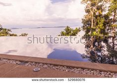 Swimming pool with infinity edge and trees shadow can be used as background