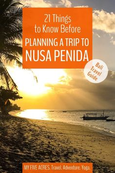 Should you include a trip to Nusa Penida in your Bali itinerary? There are plenty of great reasons to go to this little island — but there are more reasons you might want to avoid it! Is a Nusa Penida trip right for you? We've got your answer below! Bali Travel Guide, Travel Advice, Travel Guides, Travel Tips, Travel Articles, Travel Info, Billabong, Places To Travel, Travel Destinations