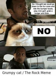 Grumpy Cat and The Rock!                                                       …