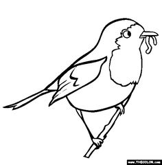 Free Bird Coloring Pages. Color in this picture of a Robin and others with our library of online coloring pages. Save them, send them; they're great for all ages. Garden Coloring Pages, Bird Coloring Pages, Online Coloring Pages, Coloring Pages For Kids, Coloring Sheets, Coloring Book, Adult Coloring, Robin Pictures, Bird Pictures