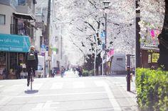 TOKYO nakameguro