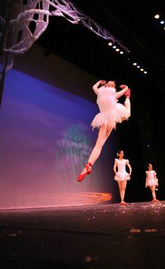 AXDA NEWS: INICIO DE SEMESTRE ENERO A MAYO 2016. Esta es tu oportunidad de iniciar estudios en danza, modelaje, actuación, canto y más... Tenemos matrícula a mitad de precio hasta el 31/enero/16. Contamos con cursos para niños desde 1 año 1/2 hasta adultos; niveles básicos a avanzados. Estamos excelentemente localizados en THE OUTLET MALL, 2do nivel Edif. Caribbean Cinemas, Canóvanas. Llama ahora al 787-256-7717 y únete a la gran familia de AXDA. www.axdapr.com #axda…