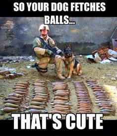 Although military dogs are known for tracking down those who threaten our wellbeing, they're also the subject of some of the funniest memes ever created. Funny Dog Memes, Funny Animal Memes, Funny Animal Pictures, Cat Memes, Funny Dogs, Funny Animals, Funniest Memes, Animals Dog, Military Jokes