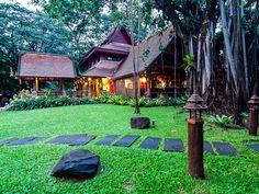 Climb the Banyan Tree, Yaang Come Village, Chiang Mai, Thailand.