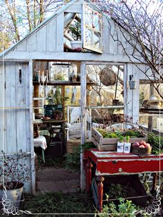 greenhouse venting .......http://www.sofiasbod.se/search?updated-max=2011-12-09T11:57:00%2B01:00&max-results=7&start=278&by-date=false