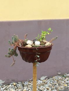 Planter Pots, Lawn And Garden