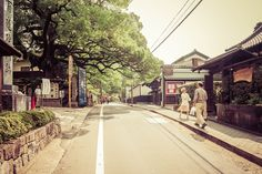 A photograph of the ancient camphor trees lining the Jingu Michi street in Kyoto, Japan Tree Line, Kyoto Japan, Travel Images, Street, Roads