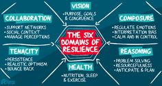 The 6 Domains of Resilience | Jurie Rossouw | Pulse | LinkedIn
