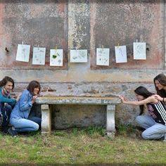 Ph. Alessandro Beneforti  #laboratoriodisegno #sketching #pianosa #cazzicanismo #goodtimes  #goodvibes #nature #redazionenatura #greatexperience #paradise #wonderful_places My Works, Photo And Video, Outdoor Decor, Instagram