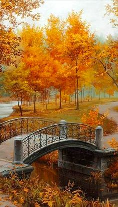 Autumn in the park beautiful amazing