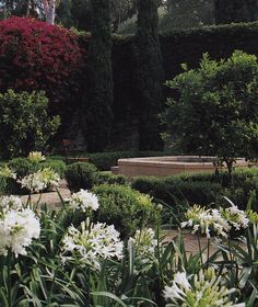 Garden-Santa Barbara- Nancy Goslee Power