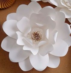 Discover thousands of images about Paper flower Big Paper Flowers, Tissue Paper Flowers, Paper Flower Wall, Paper Flower Backdrop, Giant Paper Flowers, Paper Roses, Diy Flowers, Fabric Flowers, Diy Fleur