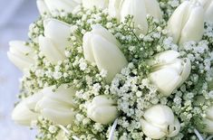Tulip and Baby's Breath Flowers .. Beautiful Flowers. I LOVE IT