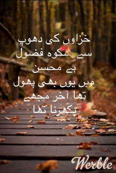 Woh bohot badbaht insan hai jo bivi ko rulata hai us ke aansu nahi ponchta Poetry Quotes In Urdu, Best Urdu Poetry Images, Love Poetry Urdu, My Poetry, Urdu Quotes, Sufi Quotes, Iqbal Poetry, Sufi Poetry, Mohsin Naqvi Poetry
