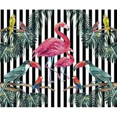 This Island Life x 6 Piece Wall Mural Set is a show stopper! The pink flamingo centerpiece is surrounded by palm leaves and exotic birds. The illustrations are done in a hand painted style. Embossed Wallpaper, Wallpaper Roll, Wall Wallpaper, Wallpaper Patterns, Flamingo Wallpaper, Tropical Wallpaper, Tropical Design, Tropical Vibes, Brewster Wallpaper
