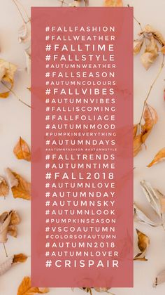 Best Instagram Hashtags, Find Instagram, Instagram Marketing Tips, Instagram Tips, Instagram Caption, Social Media Marketing Business, Mail Marketing, Popular Hashtags, Fall Weather