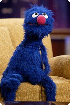 """Grover When I first saw Elmo I said,""""What's up with the red Grover?"""" My sister and nephews quickly corrected me that it was Elmo. I still like Grover better,"""