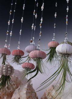 Hanging Jellyfish Airplant Uniquely Strung With Quality Gemstones And Beads That You Will Love by on Etsy Hanging Air Plants, Hanging Planters, Indoor Plants, Air Plant Display, Plant Decor, Indoor Gardening Supplies, Deco Marine, Shell Art, Jellyfish