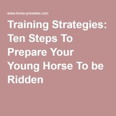 Training Strategies: Ten Steps To Prepare Your Young Horse To be Ridden