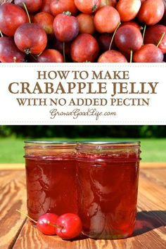Designs For Garden Flower Beds This Luminously Red Crabapple Jelly Tastes Deliciously Tart And Sweet. This Simple Crabapple Jelly Recipe Uses Just Crabapples, Sugar, And Water. No Pectin Required. Snap For The Full Recipe. Crab Apple Recipes, Jelly Recipes, Jam Recipes, Canning Recipes, Easy Canning, Canning Tips, Drink Recipes, Recipies, Crabapple Jelly Recipe