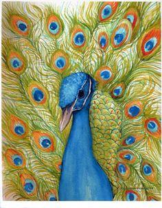 Peacock Watercolor Print. 8 x 10 Small Bird by SharonFosterArt
