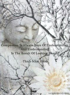 Compassion is always born of understanding ~ and understanding is the result of looking deeply ⊰❁⊱ Thich Nhat Hanh