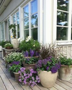Garden Cottage, Garden Pots, Garden Ideas, Potted Garden, Potted Plants Patio, Patio Ideas, Balcony Garden, Garden Front Of House, Garden Hammock