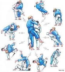 """Résultat de recherche d'images pour """"jiu-jitsu techniques"""""""
